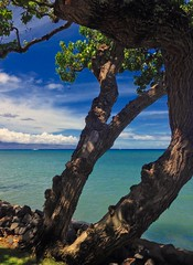Aloha Maui (Debangsu) Tags: kahana maui hawaii island pacific ocean sailboats turqoise aloha lanai hdr