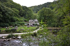 Watersmeet on Exmoor (Sa//y) Tags: watersmeet exmoor devon nationaltrust lynvalley woodlands rivergorge teagarden