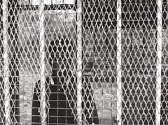 (Sbastien Pineau) Tags: konrak konark konrka puri odisha orissa inde india pineau scanned sbastienpineau analog analogue argentique pellicule analogic argntico film scaner bw nb blackandwhite blancoynegro noiretblanc man grating grid hombre homme