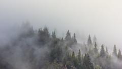 """(Isat"""") Tags: alps alpes aravis montagne mountain moutains arbre nature nuage brume"""