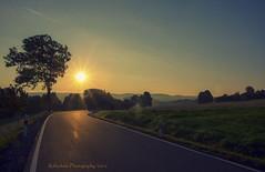 on the road again - explore # 141 (rafischatz... www.rafischatz-photography.de) Tags: sunrise road tree landscape germany oremountains frauenstein horizon pentax k3