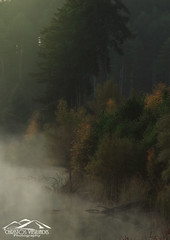 As The Sun Comes (xrhstos.bas23) Tags: greece feneos doksa landscape lake lagoon autumn fog trees nature