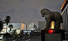 El Caballo de Botero en Monterrey. (Orcoo) Tags: night mexico caballo noche escultura nuevoleon nocturna estatua monterrey orcoo caballodebotero ordontildeez