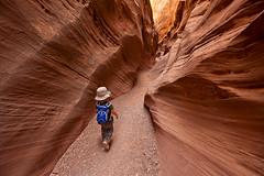 Toddler Exploring Slot Canyon, Utah (bretedge) Tags: southwest unitedstates northamerica canyoning slotcanyons coloradoplateau littlewildhorsecanyon sanrafaelreef bretedge