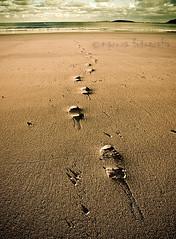 Pasos (MaRuXa fotografía) Tags: canon mar playa arena riasbaixas pasos huella maruxa galicis