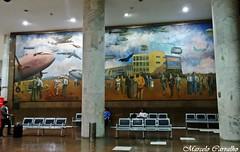 Painel no Aeroporto Santos Dumont_autor Cadmo Fausto (FM Carvalho) Tags: brazil rio brasil riodejaneiro sony cybershot aeroporto santos sonycybershot dumont santosdumont painel brsil sdu sbrj aeroportosantosdumont hx9v sonyhx9v