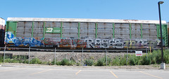 Cnial/Style/Rase/Intens (LadyBench) Tags: train graffiti winnipeg style rail ita freight krs fr8 rase intens benching cnial
