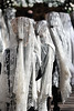 Semana Santa de Zaragoza. 2012. Revista Redobles nº 15 (Cesar Catalan) Tags: zaragoza entrada nazareno piedad silencio palabras palmas dolorosa llegada humildad sangredecristo eucaristia santoentierro esclavas prendimiento semanasantadezaragoza redobles asociacionculturalredobles