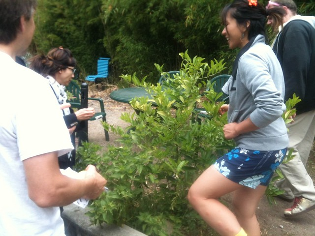 Teri & others getting to know a Lemon Tree in the SOMARTS garden.