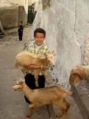 Kid Carrying Lamb (SyrianSindibad) Tags: kids morocco goats maroc lamb medina share tetouan