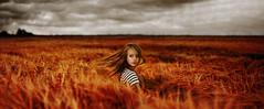 about the big firestorm (laura zalenga) Tags: red sky woman storm nature girl field weather dark fire movement corn sister blond 2012 buring ©laurazalenga evazalenga