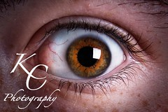 I Can See You (KC Photography) Tags: portrait brown colour macro eye photoshop canon photography diy exposure post flash alien processing kc softbox 460 450d younguo