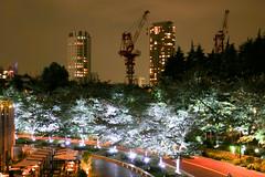 Crane around the Roppongi midtown (sapphire_rouge) Tags:   sculpture kimono darkness     girl night tokyotower japanese midtown tokyo yukata   nightview roppongi shinjuku  japan nighview lady illumination