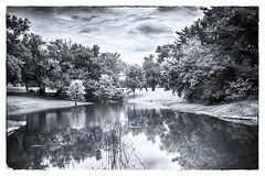 disc golf course pond