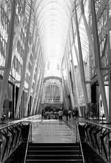 Brookfield Atrium Wednesday Morning (Bill Smith1) Tags: asahipentaxkx believeinfilm billsmithsphotography hc110b ilforddelta100 july2016 smcpentaxm50f14lens toronto