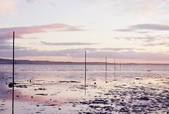 Last Light Over the Pilgrims Way (cycle.nut66) Tags: film analogue photograph kodak gold 200 scan pilgrims way holy island lindisfarne sand water sky clouds horizon nikon fm nikkor 5018