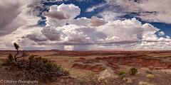 Arizona Summer Skies (OJeffrey Photography) Tags: painteddesert az arizona clouds stormclouds rainstorm pano panorama ojeffrey ojeffreyphotography jeffowens nikon d800