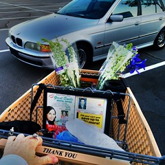 Flowers for the Weekend (MacroMarcie) Tags: square 365 project365 selfie selfportrait shopping basket car bmw wagon iphone hdr app