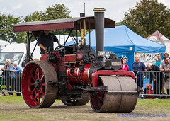 IMGL5181_Lincolnshire Steam & Vintage Rally 2016 (GRAHAM CHRIMES) Tags: lincolnshiresteamvintagerally2016 lincolnshiresteamrally2016 lincolnshiresteam lincolnshiresteamrally lincolnrally lincolnshire lincoln steam steamrally steamfair showground steamengine show steamenginerally traction transport tractionengine tractionenginerally heritage historic photography photos preservation photo vintage vehicle vehicles vintagevehiclerally vintageshow classic wwwheritagephotoscouk lincolnsteam arena mainring parade