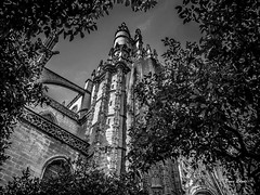 Spain May-June 2016-1066.jpg (bruce.lande) Tags: barcelona cathedral cava church cordoba flamenco friends granda history madrid mosque seville sitges spain vacation vowrenewal wine