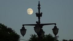 Luna entre farolas - Lisboa (Gabriel Navarro Carretero) Tags: luna moon lisboa farolas noche night lampposts lisbon