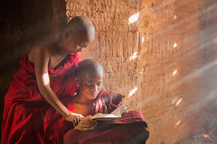Young Buddhist novice monk reading and study outside monastery (anekphoto) Tags: myanmar monks classroom buddhist religion kids robe pilgrimage children two burma travel red study burmese culture bagan male light novice people ethnic traditional lesson teaching buddhism asia faith belief religious portrait learning small window young tradition men temple student boys school monastery education buddha little southeast eastern book asian reading