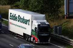 H4610 - KX16 FKP - TARA LILY - STOBART- VOLVO (GAZ SELLERS) Tags: volvo eddie stobart running loads for tesco up the motorway of england m1