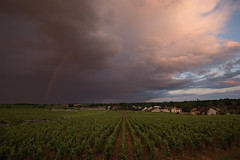 Rainbow (MrBlackSun) Tags: rainbow vineyards vigneron arcenciel bourgogne burgundy france nikon d810 nikond810