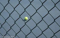 Keep it In (xshootersblog) Tags: ali delaware glasgowpark jacob jonah jordan kim tennis