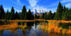 Grand Teton National Park (udbluehens) Tags: grandtetonnationalpark schwabacherslanding grandteton grandtetonfallcolors
