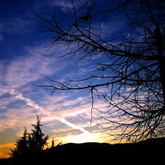 silhouettes, contrails and sunset (SS) Tags: above new pink november blue autumn light sunset red vacation sky italy orange white mountain tree colors weather yellow clouds composition contrast skyscape evening countryside colorful soft paint mood glow view angle pov walk branches liguria year perspective scenic favorites burning crop framing minimalism bianco nero tone vastness celeste iphone atmophere noseup immensit natureselegantshots