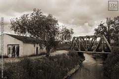 IMG_2870 (Pedro Nogueira Photography) Tags: old railroad bridge sky tree portugal water rio sepia clouds river agua ponte nuvens obidos arvores ceu comboio pedronogueira pedronogueiraphotography