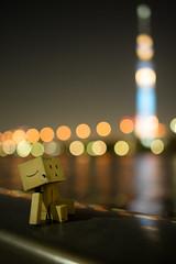 Danbo enjoy viewing Tokyo Sky Tree (Takashi(aes256)) Tags: night 日本 夜 danbo sumidariver 隅田川 東京都 台東区 nikond4 ダンボー 東京スカイツリー tokyoskytree nikonafsnikkor28mmf18g