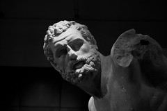 Fighting Hercules