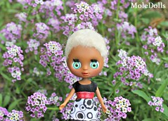 Blythe LPS Custom N.31 by MoleDolls