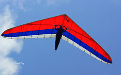 Brandon DeKock (Ron1535) Tags: wing sail roll pitch soaring glider thermal hangglider hanggliding deltaplane yaw rigidwing airframe freeflying freeflyer variometer windcurrents flexiblewing glideraircraft soaringaircraft