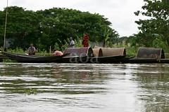 K1_2062 Monsoon Season, River Gypsies (bandashing) Tags: poverty travel england water rain weather river season manchester boat flood live poor rainy monsoon sylhet bangladesh gypsies wander balagonj bandashing