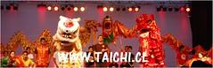 LEON CHINO    www-taichi.cl