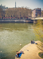 Lyon (miemo) Tags: city travel people france spring swan europe lyon quay sane