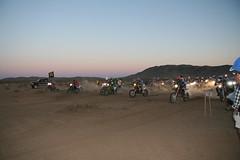 Praire Dogs Night Race 062009 007