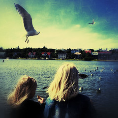 Feeding The Birds (svavaroe) Tags: iceland iphone ios iphonegraphy ísland iphone4s reykjavik girls seagulls birds summer reykjavík sky filterstorm snapseed