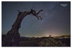 Desierto de Tabernas. Explore 27-7-2012. (Francisco J. Prez.) Tags: naturaleza nature night spain pentax negro cielo nocturnas sigma1020mm pentaxart pentaxk5 franciscojprez