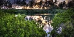 Tidal Pond (BDA Rebel) Tags: sunset reflection pond bermuda hdr photomatix hdraddicted topazinfocus