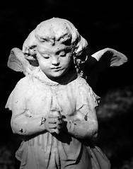 Little Angel BW (squint photo) Tags: cemetery graveyard angel photography headstone fineartphotography childsgrave fineartprint sonjaquintero squintphotography