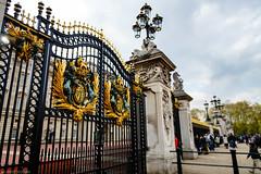 Buckingham Palace (Joerg1975) Tags: uk greatbritain england london lens europa europe unitedkingdom sony gb alpha f28 a77 linse grossbritannien objective objektiv copyrightprotected britannien grosbritannien sal1650 sonyslta77v