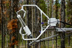 Kennedy Siding - In-canopy flux measurements (ubcmicromet) Tags: mountainpinebeetle britishcolumbia wind turbulence temperature climate fluxnet kennedysiding tower mountainpinebettle dendroctonusponderosae ubc theuniversityofbritishcolumbia