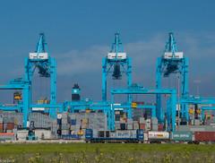 01/07/2016 | Maasvlakte (SB-2013) Tags: rtb rurtalbahn v203 v 203 g2000 g 2000 vossloh maasvlakte nlrtm port rotterdam