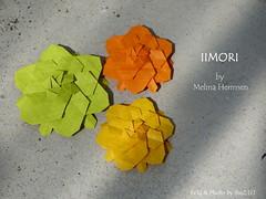IIMORI by Melina Hermsen (esli24) Tags: melinahermsen iimori ilsez origamiflower origami tessellation origamitessellation carmensprung papierfalten