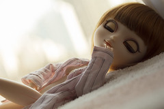 Boy won't you play with me for real? (Brie G.) Tags: pullip tiphona doll pulliptiphona groove obitsu
