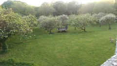 Blake Manor Orchard